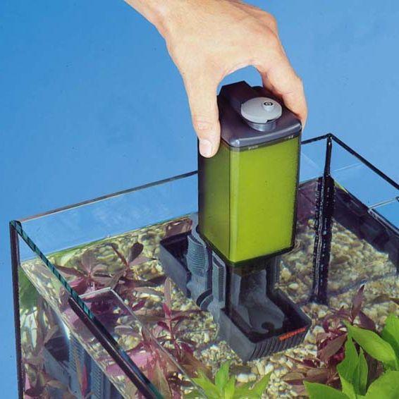 Tipos de filtros para acuarios elijo un filtro de for Peces de agua dulce para peceras