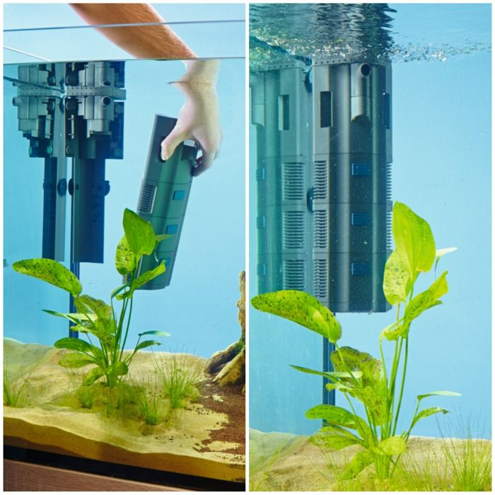 Tipos de filtros para acuarios elijo un filtro de for Filtro para pecera
