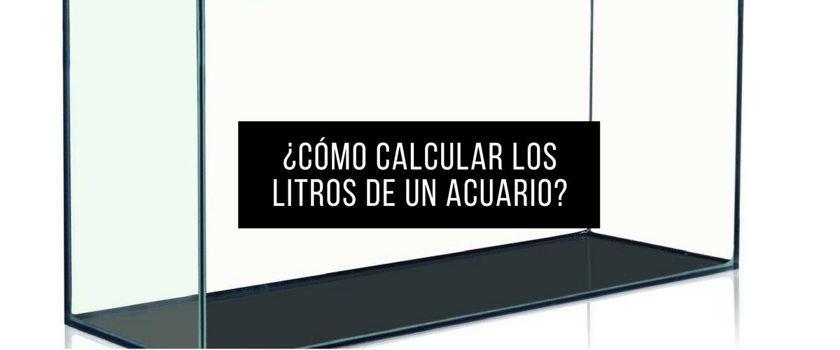 Calcula aqu los litros de tu acuario r pido y f cil for Cuantos litros de agua caben en una piscina